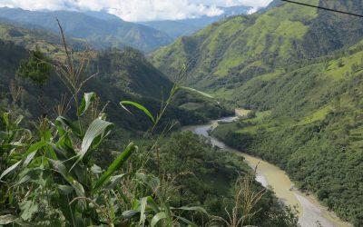 Boabele de cafea Guatemala Huehuetenango si Brazil Fazenda Paredao